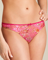 Cadolle Bagatelle Lace Cathy String