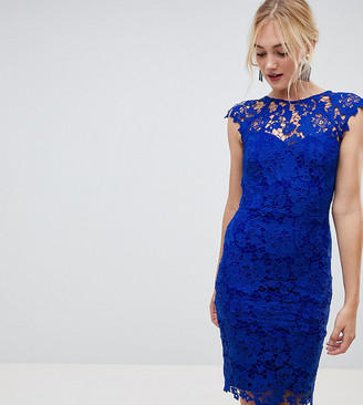 Paper Dolls Tall midi lace dress with scalloped plunge back in bright blue