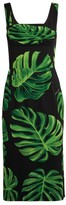 Dolce & Gabbana Leaf Print Dress