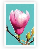 Design Mondo Magnolia Art Print, Jade, A3