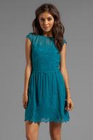 Dolce Vita Kloey New Baroque Dress