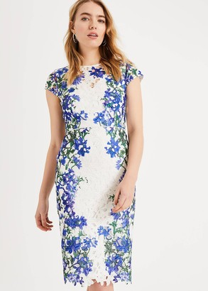 Phase Eight Kyra Floral Lace Dress