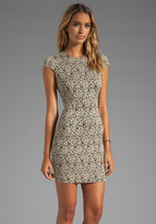 Dolce Vita Betsey Stretch Rose Lace Dress in Nude/Black