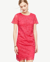 Ann Taylor Petite Leaf Lace Shift Dress
