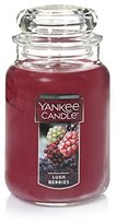 Yankee Candle Company Lush Berries