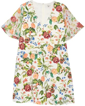 Tash + Sophie Floral Printed Flounce Sleeve Dress (Plus Size)