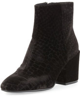 Ash Erika Velvet Ankle Boot, Black
