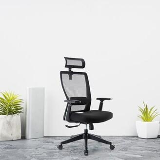 Inbox Zero Executive Office Ergonomic Task Chair