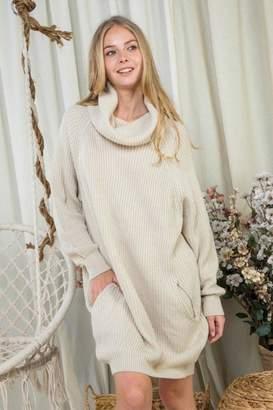 Day & Night Turtleneck Sweater Dress
