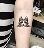 Set of 5 Waterproof Temporary Fake Tattoo Stickers Sexy Cute Grey Brown Cat Animals