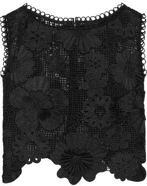 Anna Sui Cropped Floral-appliqued Guipure Lace Top