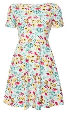Dorothy Perkins Womens Dp Petite Multicolour Floral Print Skater Dress
