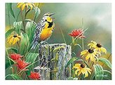 Meadowlark Morning 1000 piece Puzzle [Toy] by Outset Media Games