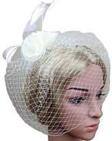 VaniaDress Women Bow Flower Cocktail Hair Clip Bridal Birdcage Face Veil V007TS
