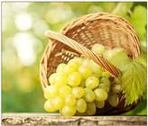 """YISUMEI 60"""" x 80"""" Blanket Comfort Thin Soft Plush Throw Basket Grape Delicious Camouflage Spot"""