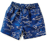 Joules Little Boys 3-6 Shark Facts Swim Shorts