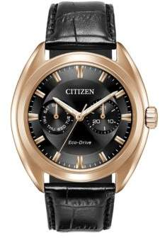 Citizen Paradex Eco-Drive Stainless Steel Analog Leather Strap Watch