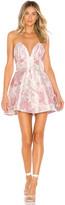 Lovers + Friends Aragus Mini Dress