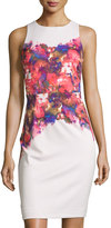 Maggy London Rose-Print Sheath Dress, White/Red