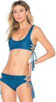Acacia Swimwear Hunter Top