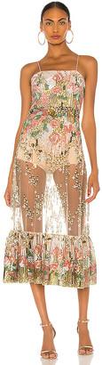 Alexis Roseville Dress