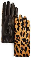 Bloomingdale's Leopard Cashmere & Calf Hair Gloves - 100% Exclusive