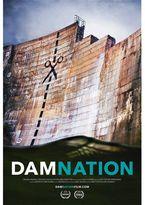 Patagonia DamNation Poster