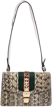 Gucci Beige/Black Python Small Web Chain Sylvie Shoulder Bag