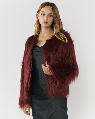 Everly Collective - Women's Red Jackets - Marmont Faux Fur Jacket - Size One Size, XS at The Iconic
