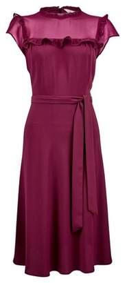 Dorothy Perkins Womens **Billie & Blossom Mulberry Ruffle Belted Skater Dress