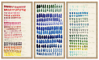 Soicher Marin Susan Hable - Swatch: Rose - Blue & Green