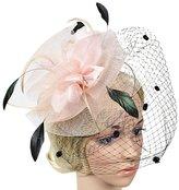 Sheliky Fascinator Clip Hentucky Derby Headdress Tea Party Wedding Bridal Veil Headwear