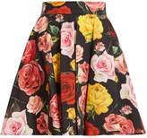 Dolce & Gabbana Rose-print cotton skirt