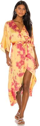 Privacy Please Savanna Dress