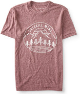 Catskill Mtns Graphic T