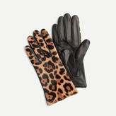 J.Crew Italian leather calf hair tech gloves