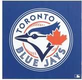 Pottery Barn Teen MLB Framed Pinboard, Blue Jays