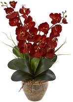 Nearly Natural Autumn Double Phalaenopsis Harvest Silk Orchid Arrangement in Ceramic Vase
