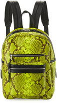 Ash Danica Large Leather Backpack, Yellow Snake