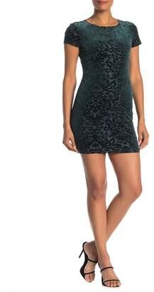 Jump Short Sleeve Velvet Burnout Dress