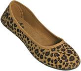 Dawgs Tan Leopard Kaymann Flat - Women