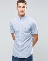 Tommy Hilfiger Shirt In Blue Poplin Short Sleeves In Regular Fit