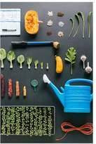 Pottery Barn Farming Tools & Vegetables Art Print