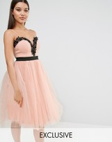 Rare London Lace Top Tulle Dress