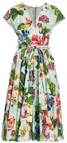 Dolce & Gabbana Poplin Floral-Print Belted Dress