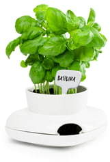 Sagaform Small Herb Pot