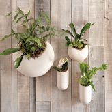west elm Shane Powers Ceramic Wall Planters