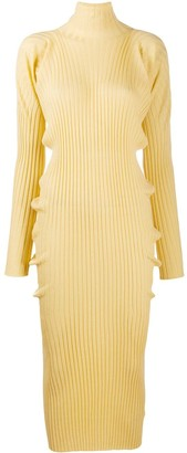 Bottega Veneta Roll Neck Knit Dress