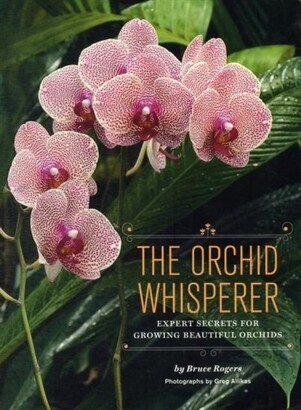 Bruce Rogers The Orchid Whisperer: Expert Secrets For Growing Beautiful Orchids (orchid Potting, Orchid Seed Car...