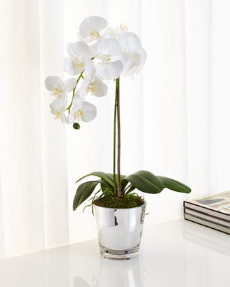Ndi Orchids in Mirrored Glass Faux-Floral Arrangement